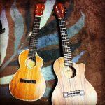 名前だけでは想像できない?フラで使われるハワイ楽器を紹介&解説!